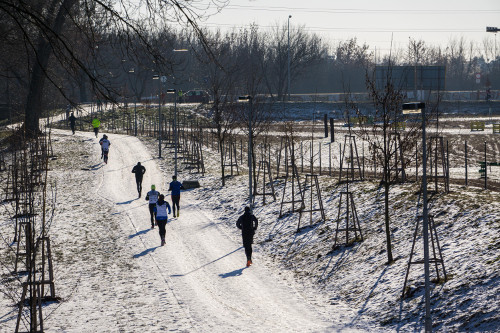 Innogy Winter Run Brno 2017